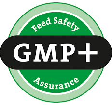 gmp plus logo
